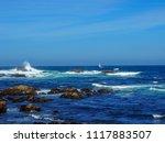 pacific grove  ca   usa  ... | Shutterstock . vector #1117883507