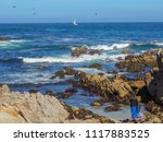 pacific grove  ca   usa  ... | Shutterstock . vector #1117883525