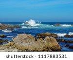 pacific grove  ca   usa  ... | Shutterstock . vector #1117883531