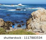 pacific grove  ca   usa  ... | Shutterstock . vector #1117883534