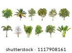 Isolated Big Tree White Background - Fine Art prints