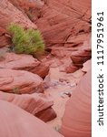 sanstone slot canyon with...   Shutterstock . vector #1117951961