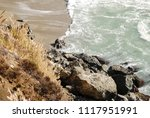 light colored landscape from...   Shutterstock . vector #1117951991