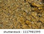 clean mountain river   stones | Shutterstock . vector #1117981595
