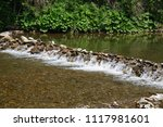clean mountain river  stream | Shutterstock . vector #1117981601