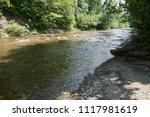clean mountain river  stream | Shutterstock . vector #1117981619