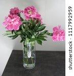 beautiful peonies in a vase.... | Shutterstock . vector #1117992959