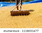 dehumidification process... | Shutterstock . vector #1118031677