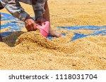 dehumidification process... | Shutterstock . vector #1118031704