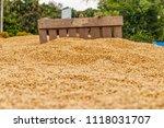 dehumidification process... | Shutterstock . vector #1118031707