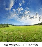Meadow And Forest   Countryside