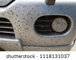insects on the bumper car | Shutterstock . vector #1118131037