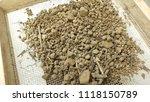 soil with a sieve  6 mm   soil... | Shutterstock . vector #1118150789
