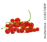 fresh  nutritious and tasty red ... | Shutterstock .eps vector #1118172839