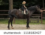 equine therapy  recreation... | Shutterstock . vector #1118182427
