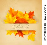colorful autumn leaves on a old ... | Shutterstock .eps vector #111830441