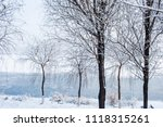 snow scenery and rime in the... | Shutterstock . vector #1118315261