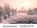 snow scenery and rime in the... | Shutterstock . vector #1118315279