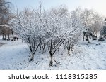 snow scenery and rime in the... | Shutterstock . vector #1118315285