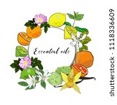 vector drawn essential oils... | Shutterstock .eps vector #1118336609