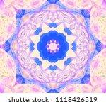 beautiful fuchsia unique... | Shutterstock . vector #1118426519