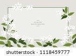 Vector Jasmine Flower Banners....