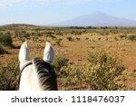 horseback safari view of zebra... | Shutterstock . vector #1118476037