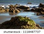 Moss Rock On The Beach.
