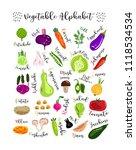 summer children's alphabet with ... | Shutterstock .eps vector #1118534534