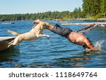 man and yellow lab dog jump... | Shutterstock . vector #1118649764