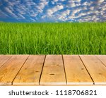 rice cultivation in thailand. | Shutterstock . vector #1118706821