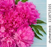Small photo of Fresh magenta peony flowers frame on blue wooden background. Square.