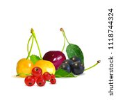 fresh  nutritious and tasty... | Shutterstock .eps vector #1118744324