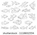 popular aquarium fishes... | Shutterstock .eps vector #1118832554
