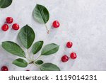 composition red berries and... | Shutterstock . vector #1119014231