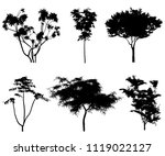 silhouettes of tropical trees...   Shutterstock .eps vector #1119022127