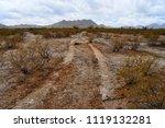 vehicle tracks sonora desert... | Shutterstock . vector #1119132281