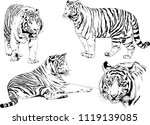 set of vector drawings on the... | Shutterstock .eps vector #1119139085