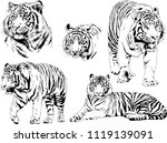 set of vector drawings on the... | Shutterstock .eps vector #1119139091