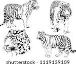 set of vector drawings on the... | Shutterstock .eps vector #1119139109