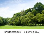 Green Park With Blue Sky