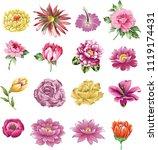 set of flower   Shutterstock .eps vector #1119174431