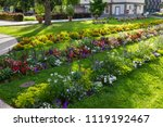 city park blooming flowers at... | Shutterstock . vector #1119192467
