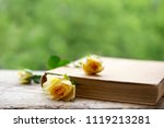 rose as a bookmark in the book | Shutterstock . vector #1119213281