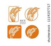 rice  vector illustration | Shutterstock .eps vector #1119257717