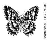 butterfly. vector illustration... | Shutterstock .eps vector #1119276881