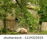 transylvania  romania   romania ...   Shutterstock . vector #1119323525