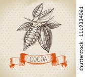 hand drawn sketch cocoa... | Shutterstock .eps vector #1119334061