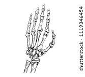 skeleton is a sketch. bones... | Shutterstock .eps vector #1119346454