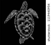 The Vector Logo Turtle  For T...